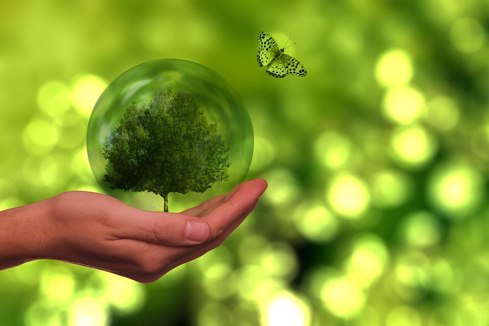 Projekt Doktor Iroda Kft.|Pályázati lehetőség energiahatékonyságra